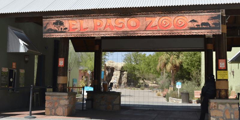 casas-de-leon-lifestyle-outdoor-zoo-1