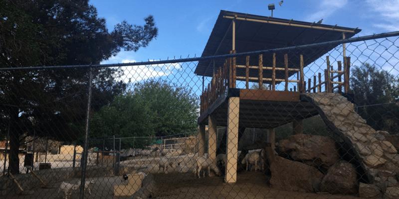 casas-de-leon-lifestyle-outdoor-cattlemans-steakhouse-2